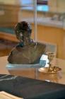 В Спасском-Лутовиново открылась выставка «Знакомый Ваш Сергей Есенин»